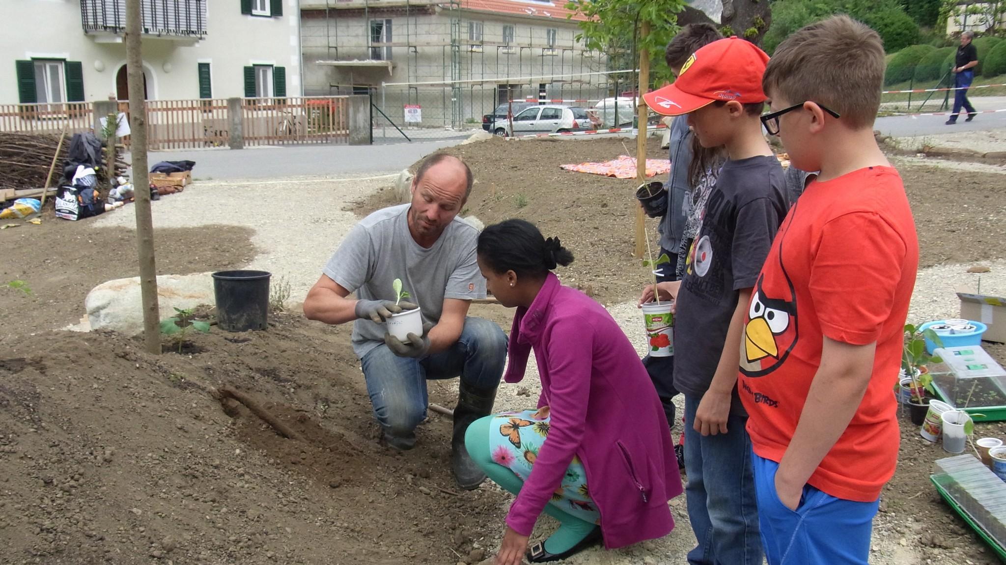 """Schulgartenprojekt der VS Peggau in Kooparation mit dem """"Garten für ALLE"""" der Firmengruppe Zuser in Peggau"""