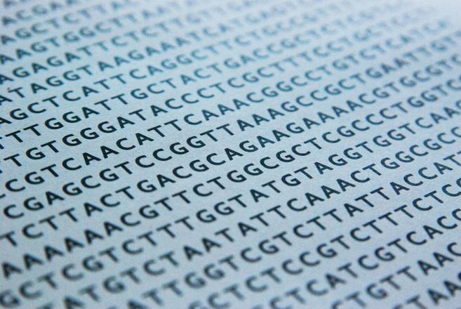 Dank der technologischen Fortschritte konnten Biologen und Ärzte bereits eine Fülle an Genen entschlüsseln. Trotzdem ist das umfangreiche Wissen noch zu komplex, um in der klinischen Praxis flächendeckend eingesetzt zu werden.