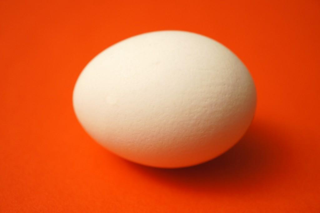 Am Anfang war das Ei. Bild: Rosmarie Voegtli, Flickr