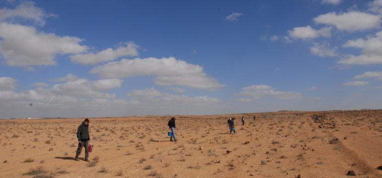 Das Team um Schörner beging die Areale der Dekalogs-Region weiträumig auf der Suche nach Keramikscherben.