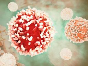 Krebs entsteht, wenn die natürliche Zellteilung gestört wird und dadurch das Zellwachstum außer Kontrolle gerät.