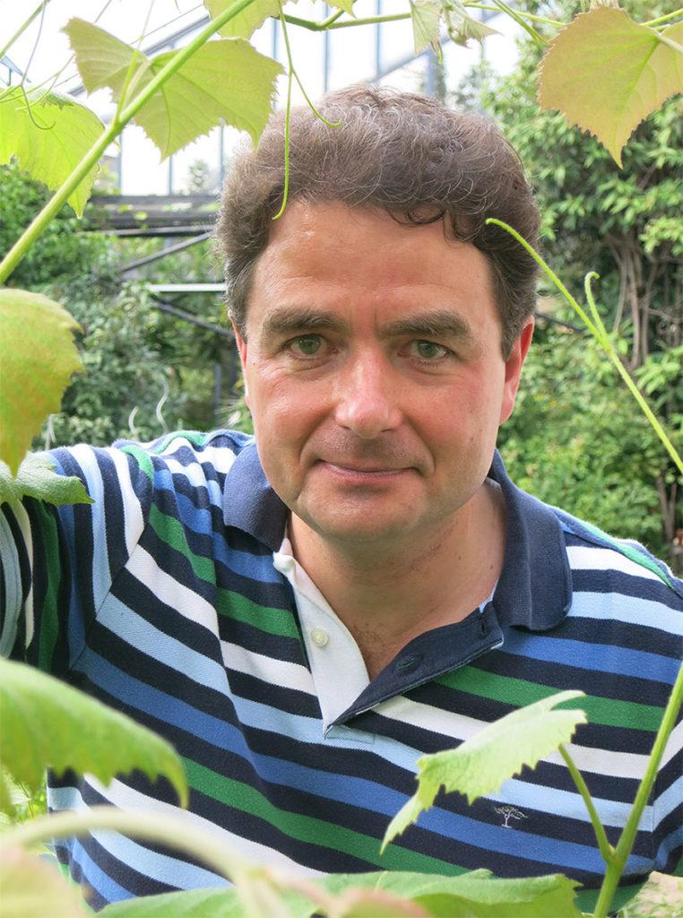 Markus Teige steht in einer Art Gewächshaus und blickt durch eine Pflanze hindurch direkt in die Kamera.