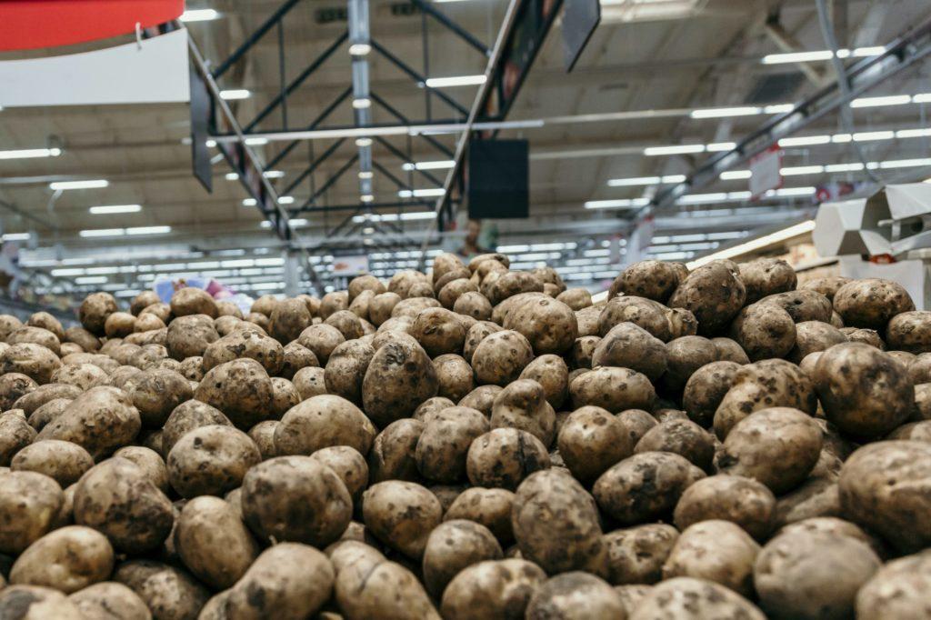 Das Bild zeigt einen Haufen Kartoffeln, der in einer Halle liegt.