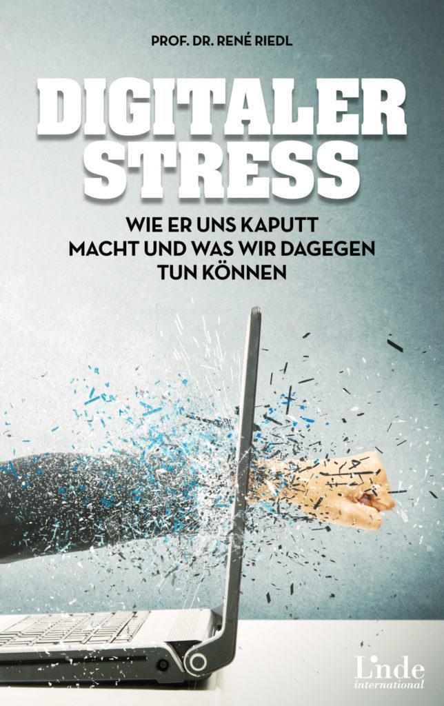"""Cover das Buchs """"Digitaler Stress"""". Auf dem Bild schlägt jemand mit der Faust durch den Bildschirm eines Laptops."""