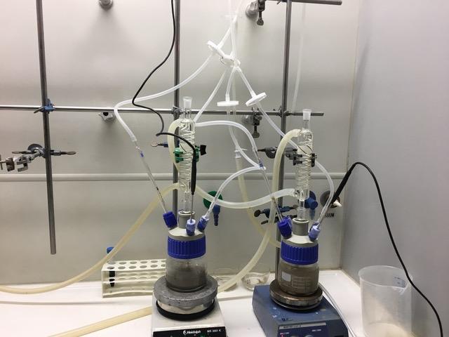 Das Bild zeigt zwei kleine, durchsichtige Gefäße auf einem Gerät, dass wie eine klobige Waage aussieht, an denen an vielen Stellen Schläuche befestigt sind.